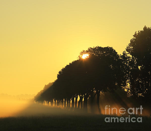 HJBH Photography - A new day