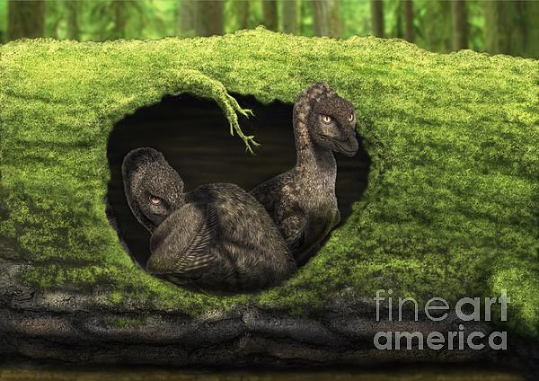 A Pair Of Juvenile Troodons Print by Alvaro Rozalen