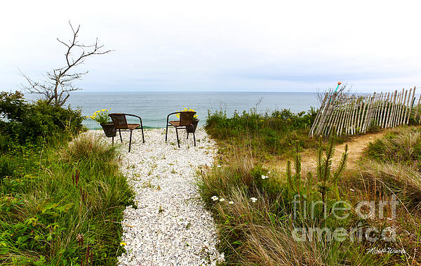 A Peaceful Respite By The Shore Print by Michelle Wiarda