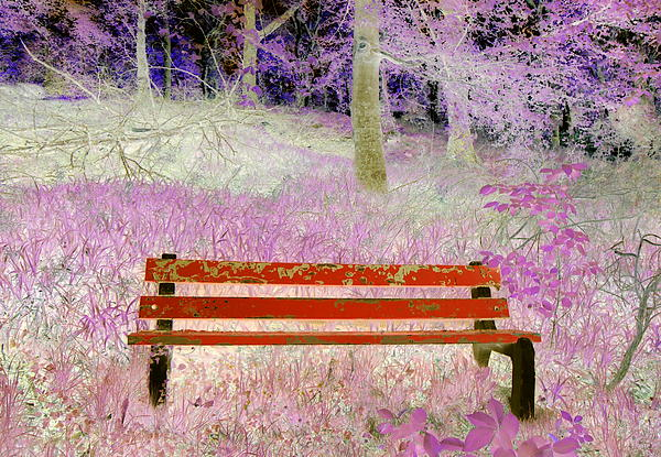 A Place To Rest Print by The Creative Minds Art and Photography