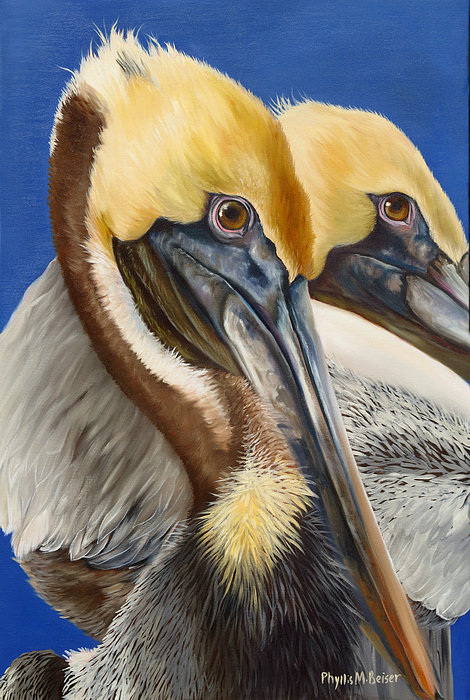 Phyllis Beiser - A Portrait Of Two Pelicans