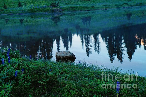 A Rock In The Reflection Print by Jeff  Swan