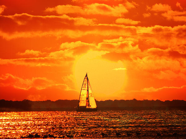 A Sailboat At Sunset Print by Raymond Salani III