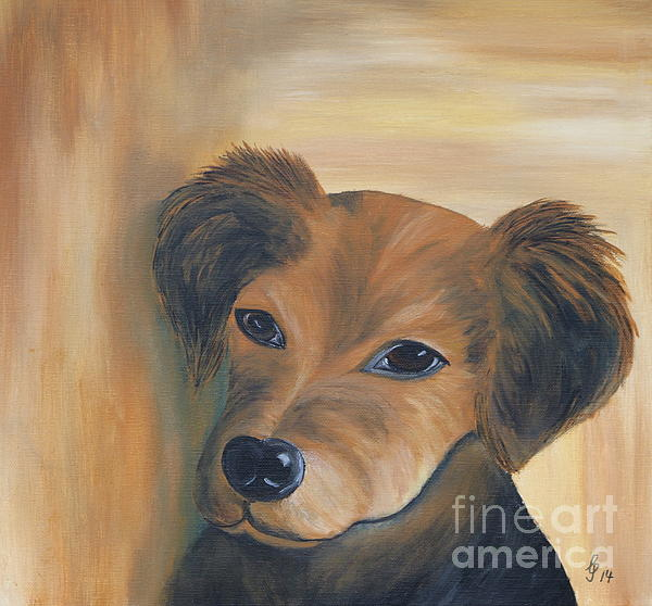 Christiane Schulze Art And Photography - A Sweet Puppy Face