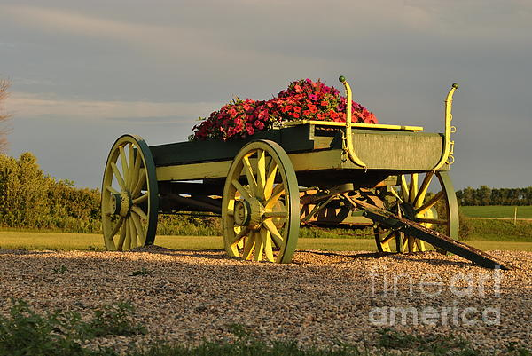 Dorothy Pinder - A Wagon Full of Flowers