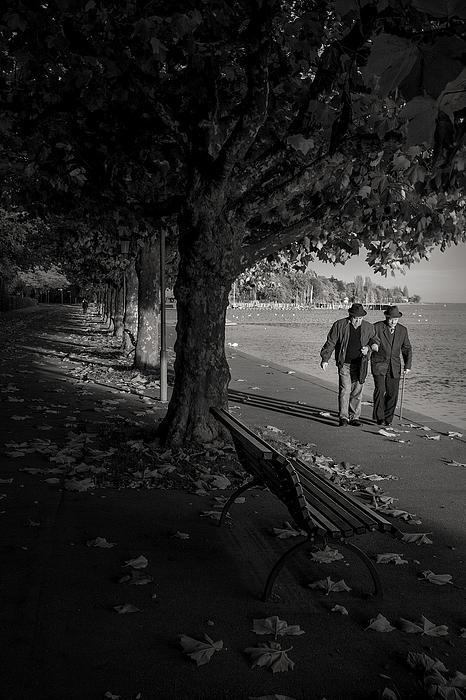 A Walk In The Park Print by Antonio Jorge Nunes