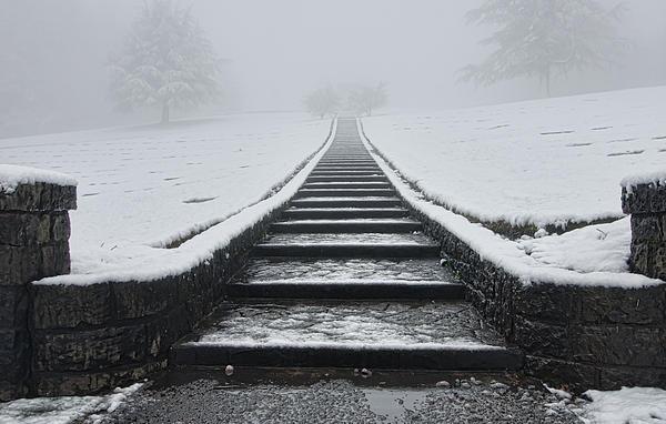 A Walk Into The Fog Print by Don Schwartz