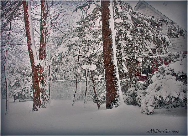 A Winter Wonderland Print by Mikki Cucuzzo
