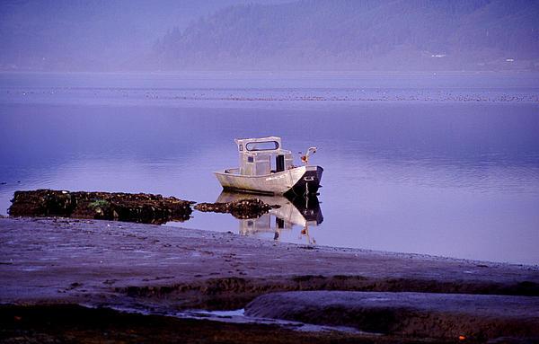 Abandoned Boat Print by Joe Klune
