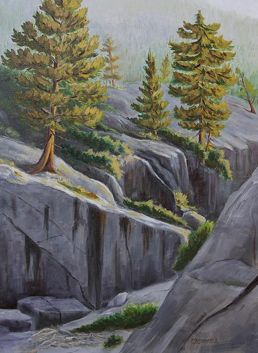 Above The Gorge Print by Cheryl Bloomfield