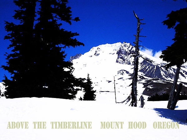 Above The Timberline  Mt Hood  Oregon Print by Glenna McRae