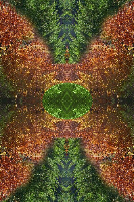 Abstract 164 Print by J D Owen