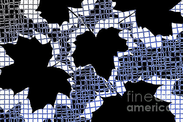 Abstract Leaf Pattern - Black White Blue Print by Natalie Kinnear