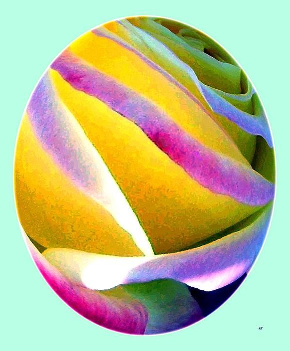 Abstract Rose Oval Print by Will Borden