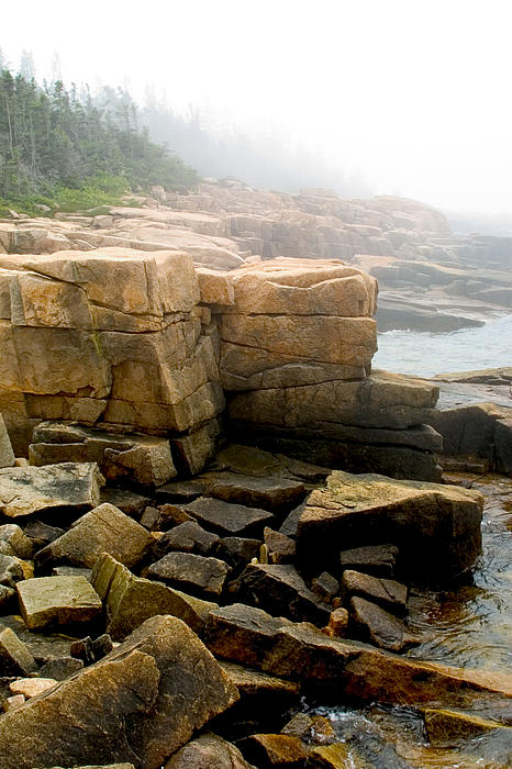 Acadia Morning 7647 Print by Brent L Ander