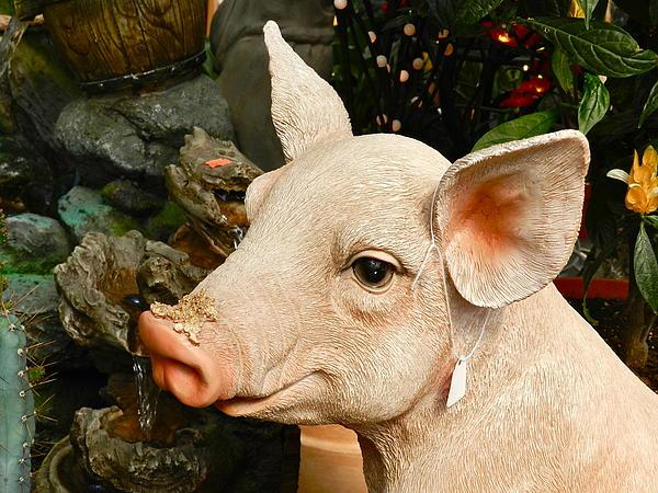Ion vincent DAnu - Acrylic Pig at Discount