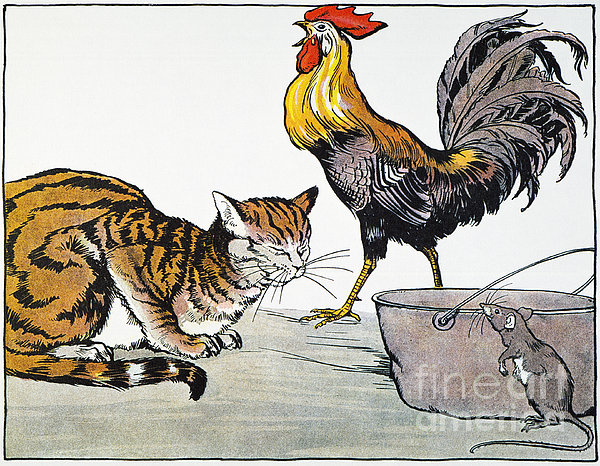 Aesop: Cat, Cock, And Mouse Print by Granger