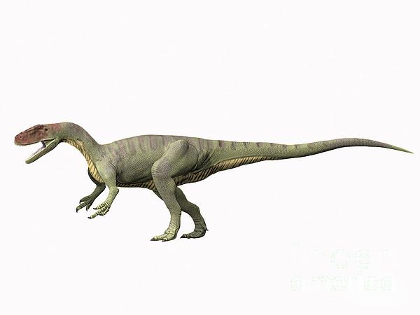 Afrovenator Abakensis, Middle Jurassic Print by Nobumichi Tamura