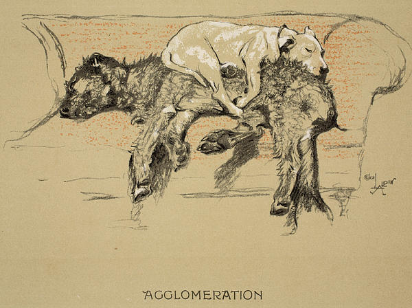 Agglomeration Print by Cecil Charles Windsor Aldin