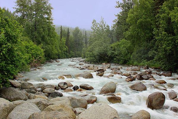 Alaska - Little Susitna River Print by Kim Hojnacki
