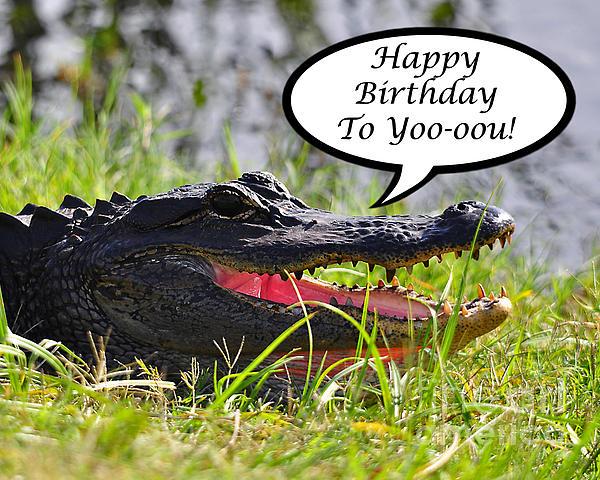 Alligator Birthday Card Print by Al Powell Photography USA