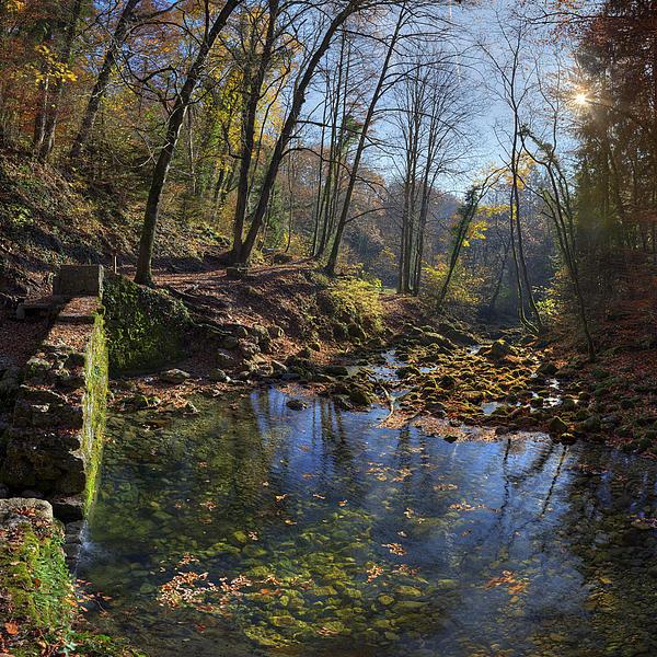 Allondon River Source Print by Patrick Jacquet