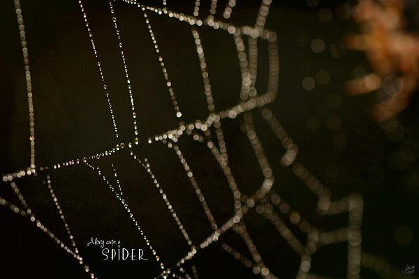 Along Came A Spider Print by Lisa Knechtel