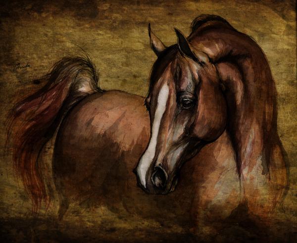 Amber  Print by Angel  Tarantella