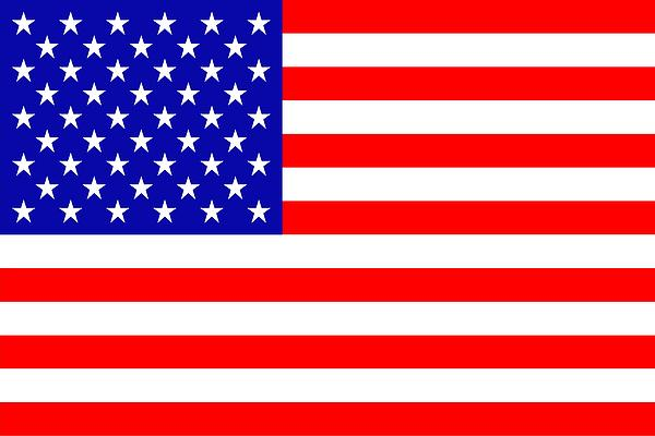 American Flag Print by Toppart Sweden