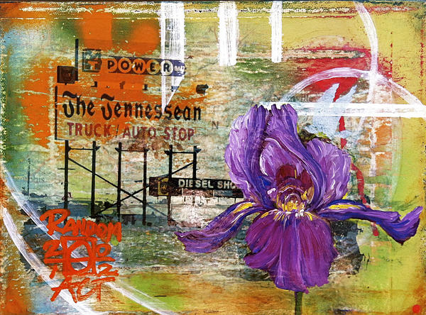 An Iris For The Tennessean Print by Andrea LaHue aka Random Act