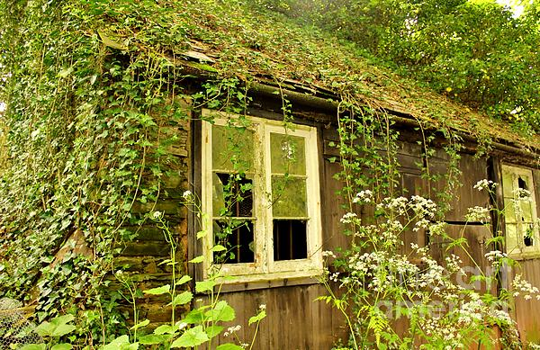 Ancient Cottage Print by Rene Triay Photography