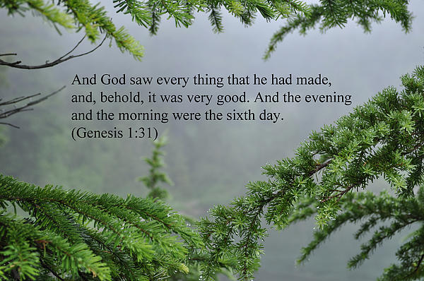 And God Saw Print by Roger Reeves  and Terrie Heslop