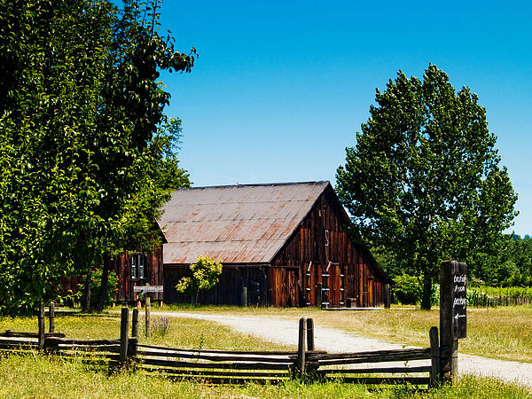 Anderson Valley Barn Print by Bill Gallagher