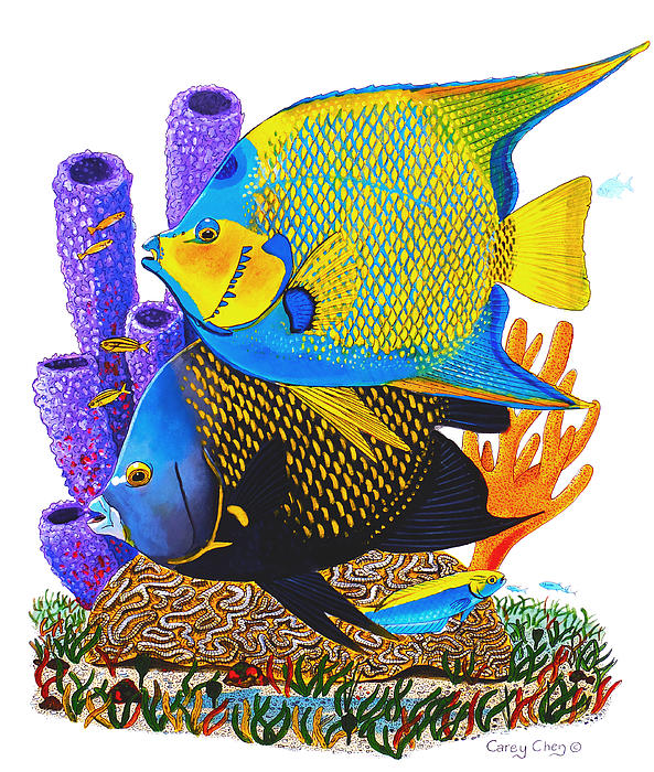Angel Fish Print by Carey Chen