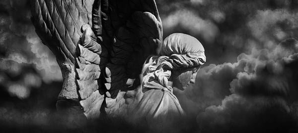 Angel's Flight Print by Marc Huebner
