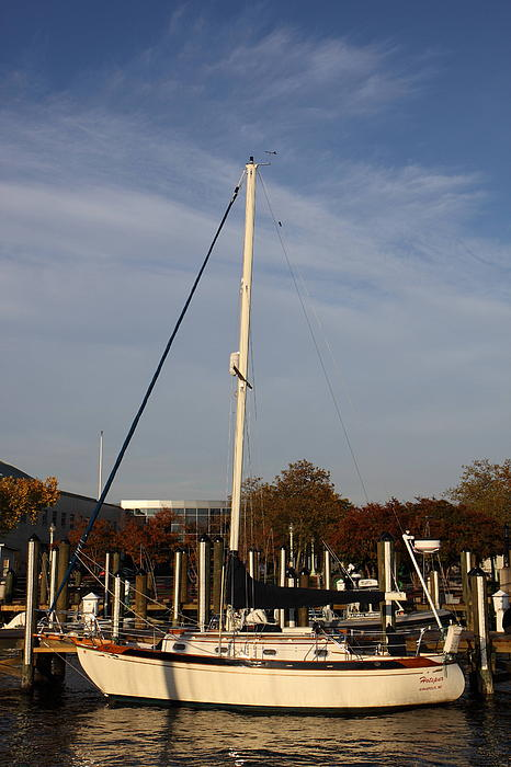 Annapolis Md - 121246 Print by DC Photographer