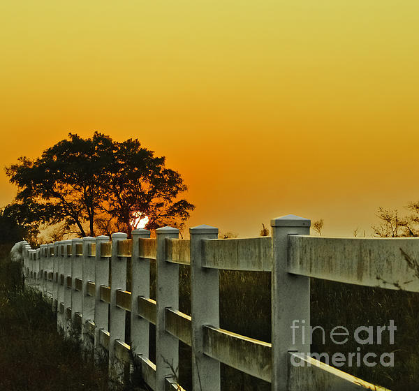 Another Tequila Sunrise Print by Robert Frederick