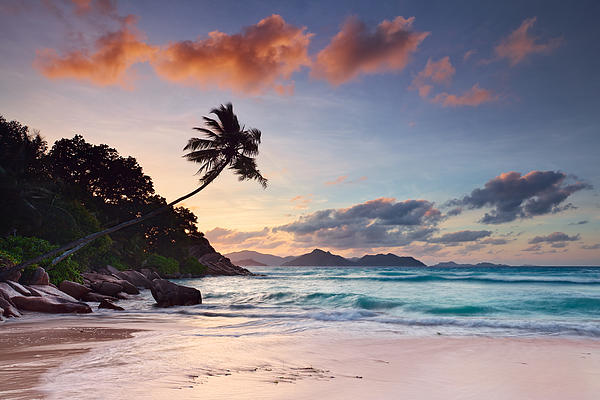 Anse Severe Print by Michael Breitung