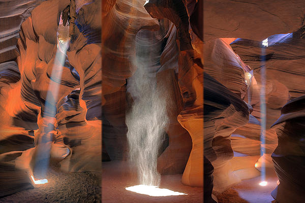 Antelope Triptych Print by Patrick Jacquet