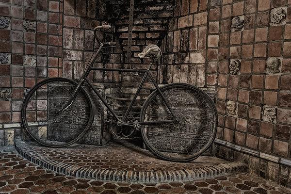 Antique Bicycle Print by Susan Candelario