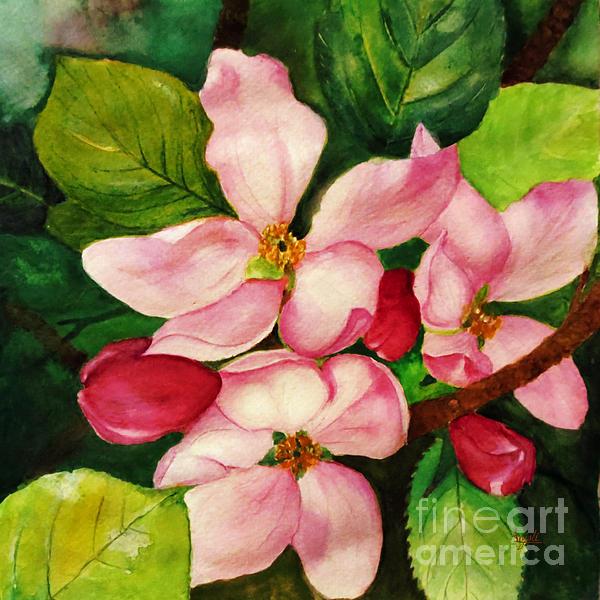 Apple Blossom Print by Anjali Vaidya