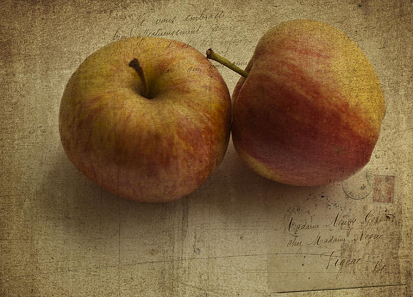 Apples Print by Nomad Art And  Design