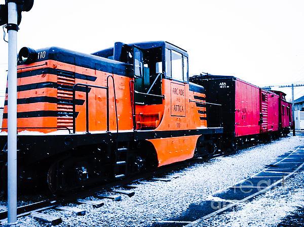 Elizabeth Duggan - Arcade And Attica Railway Train