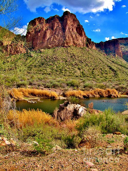 Arizona At Its' Best Print by Marilyn Smith