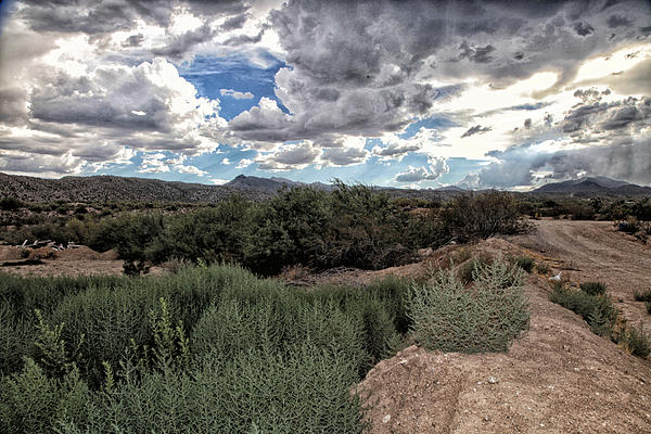 Arizona Rain Print by Joyce Isas