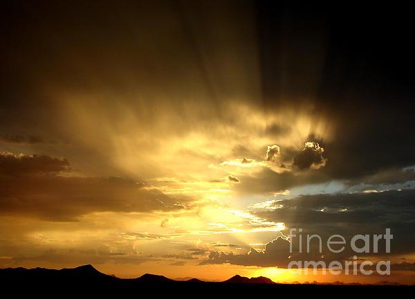 Kerri Mortenson - Arizona Sunset