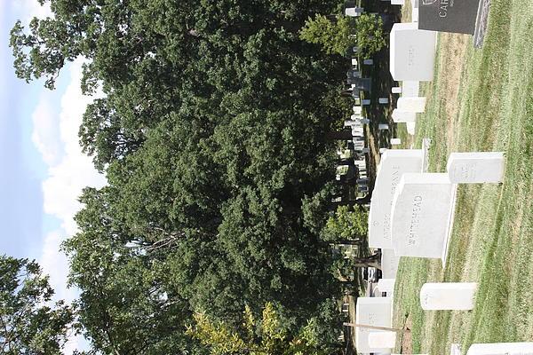 Arlington National Cemetery - 121237 Print by DC Photographer