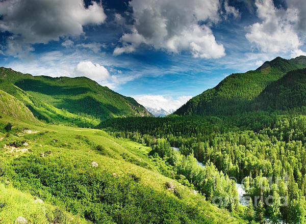 Art Beautiful Greens Landscape Print by Boon Mee