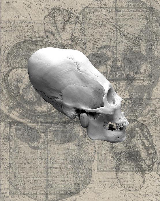 Artifactus I I I Print by Charles Creasy Jr