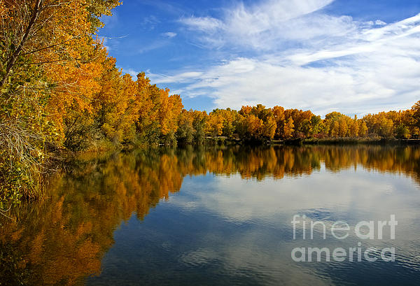 As The Leaves Turn Print by Bob Hislop